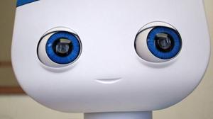 Beitragsbild Autom der Abnehmroboter aus den USA