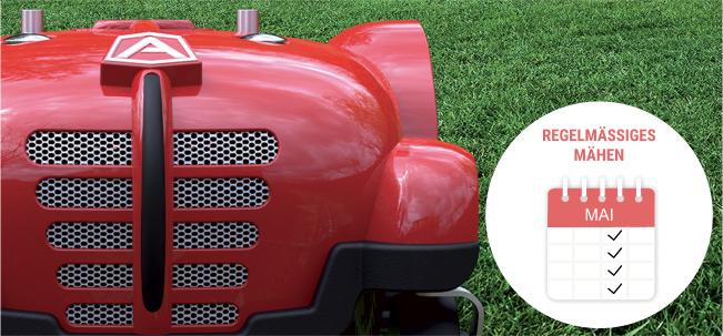 Regelmäßiges Mähen perfekter Rasen mit Rasenroboter