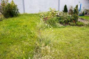 Ciicky Gartenvergleich
