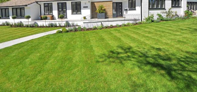 Perfekter Rasen gruen mit Haus