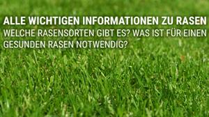 Beitragsbild Nützliche Informationen für den perfekten Rasen - Dünger, Rasensamen und Pflege!