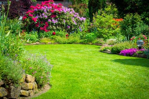 Garten nach Automower 305