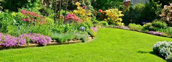 Garten nach Automower 330