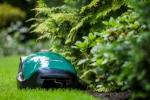 Robomow RC306 im Garten