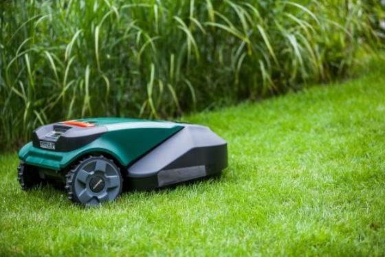 Robomow auf dem Rasen